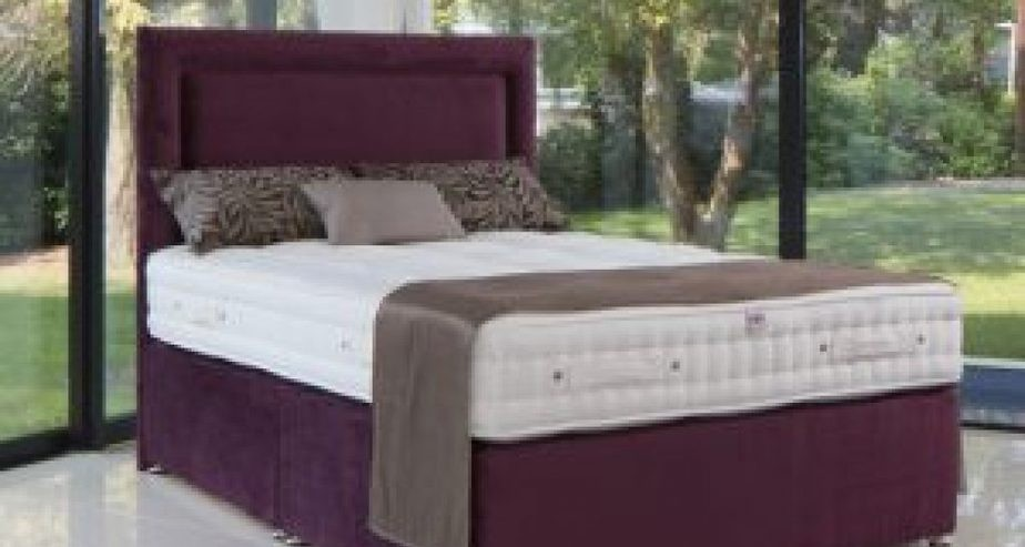 millbrook ortho mattress collection