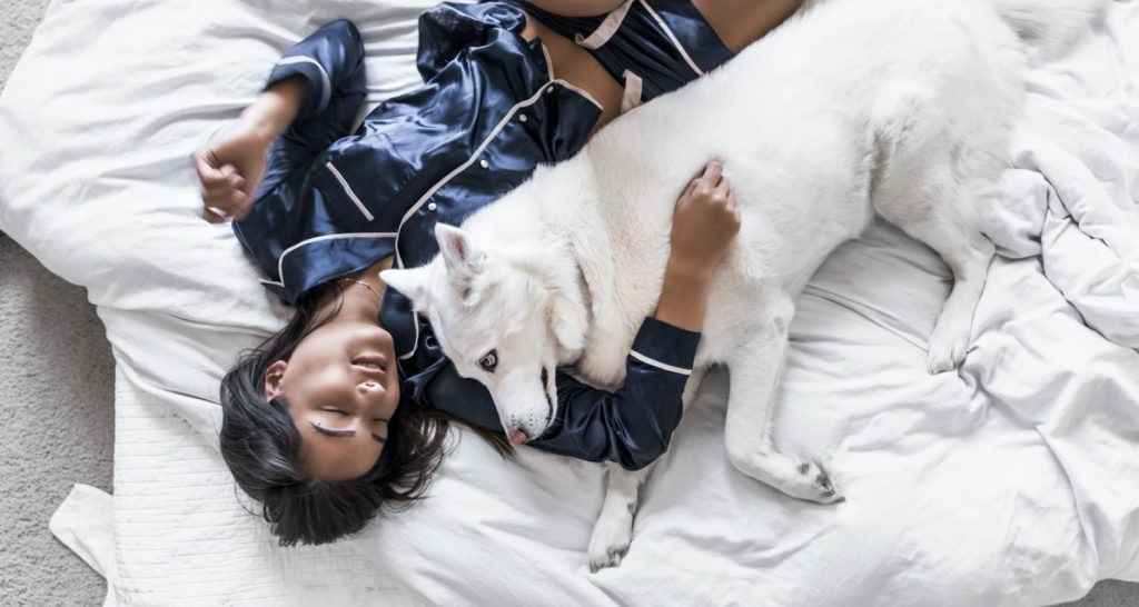 Co-sleeping with dogs has its pros and cons